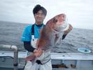サムネイル:2016年 大物 真鯛